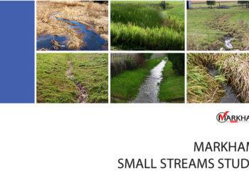 Markham-Small-Streams-Study---Image